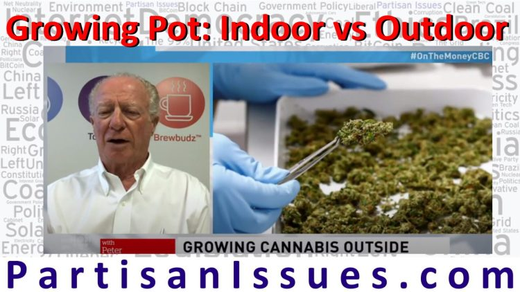 cost of growing pot indoor vs outdoor