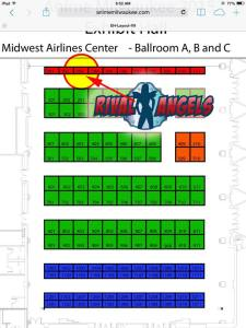Anime Milwaukee 2015