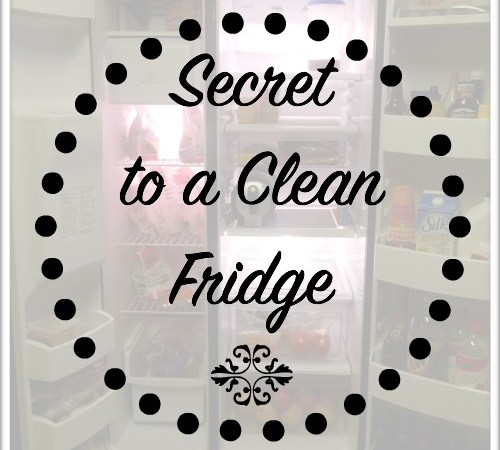 Secret to a Clean Fridge | Rhinestones & Sweatpants