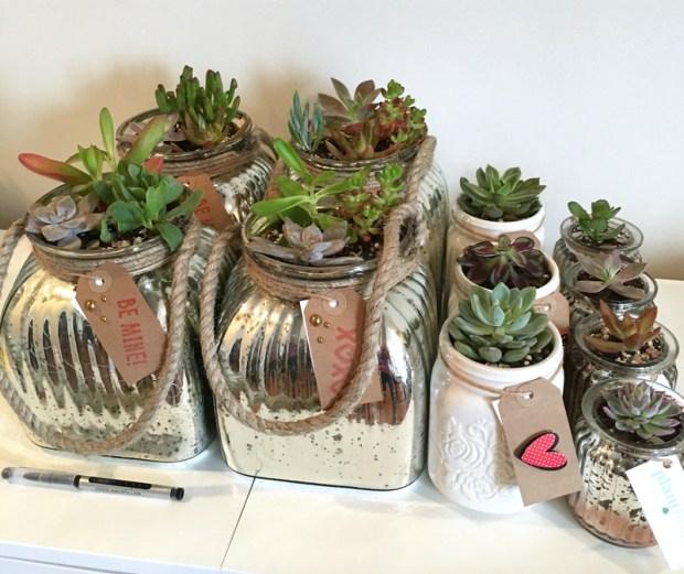 planthropy_vday_gifts