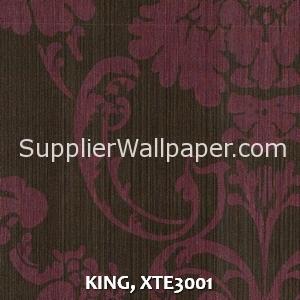 KING, XTE3001