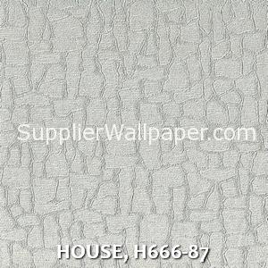 HOUSE, H666-87