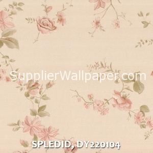 SPLEDID, DY220104