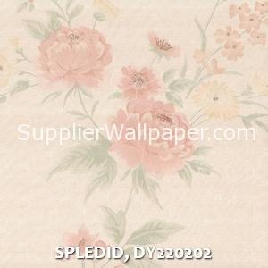 SPLEDID, DY220202