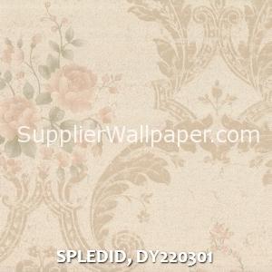SPLEDID, DY220301