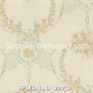 SPLEDID, DY220504
