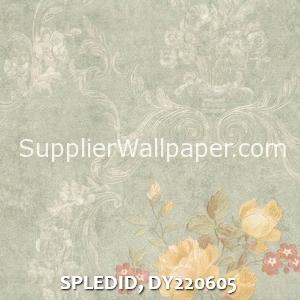 SPLEDID, DY220605