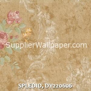 SPLEDID, DY220606