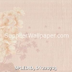 SPLEDID, DY220703