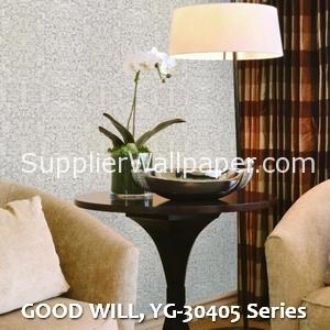 GOOD WILL, YG-30405 Series