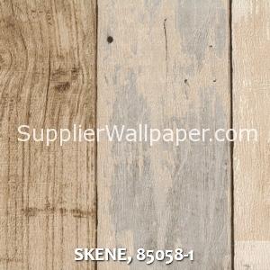 SKENE, 85058-1