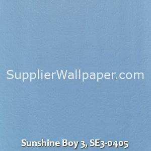 Sunshine Boy 3, SE3-0405