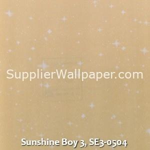 Sunshine Boy 3, SE3-0504
