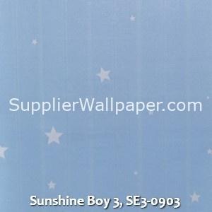 Sunshine Boy 3, SE3-0903