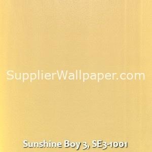 Sunshine Boy 3, SE3-1001
