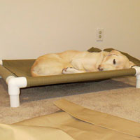 PVC cots for dogs - The DIY Girl