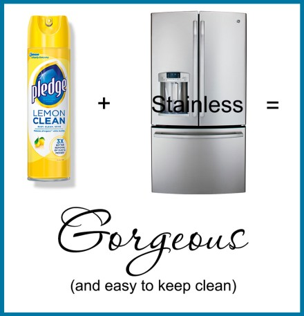 Best way to clean stainless - TheDIYGirl.com