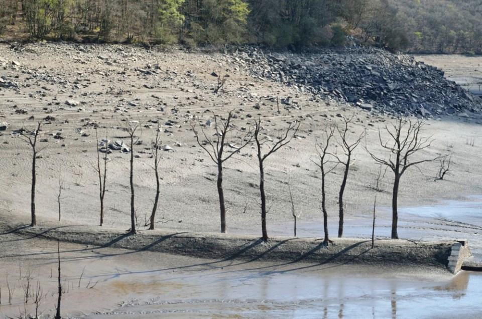 assec du lac de guerlédan