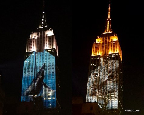 Animals pics on Empire State Building