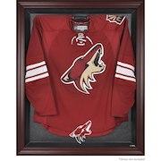 Arizona Coyotes Fanatics Authentic Mahogany Framed Jersey Display Case