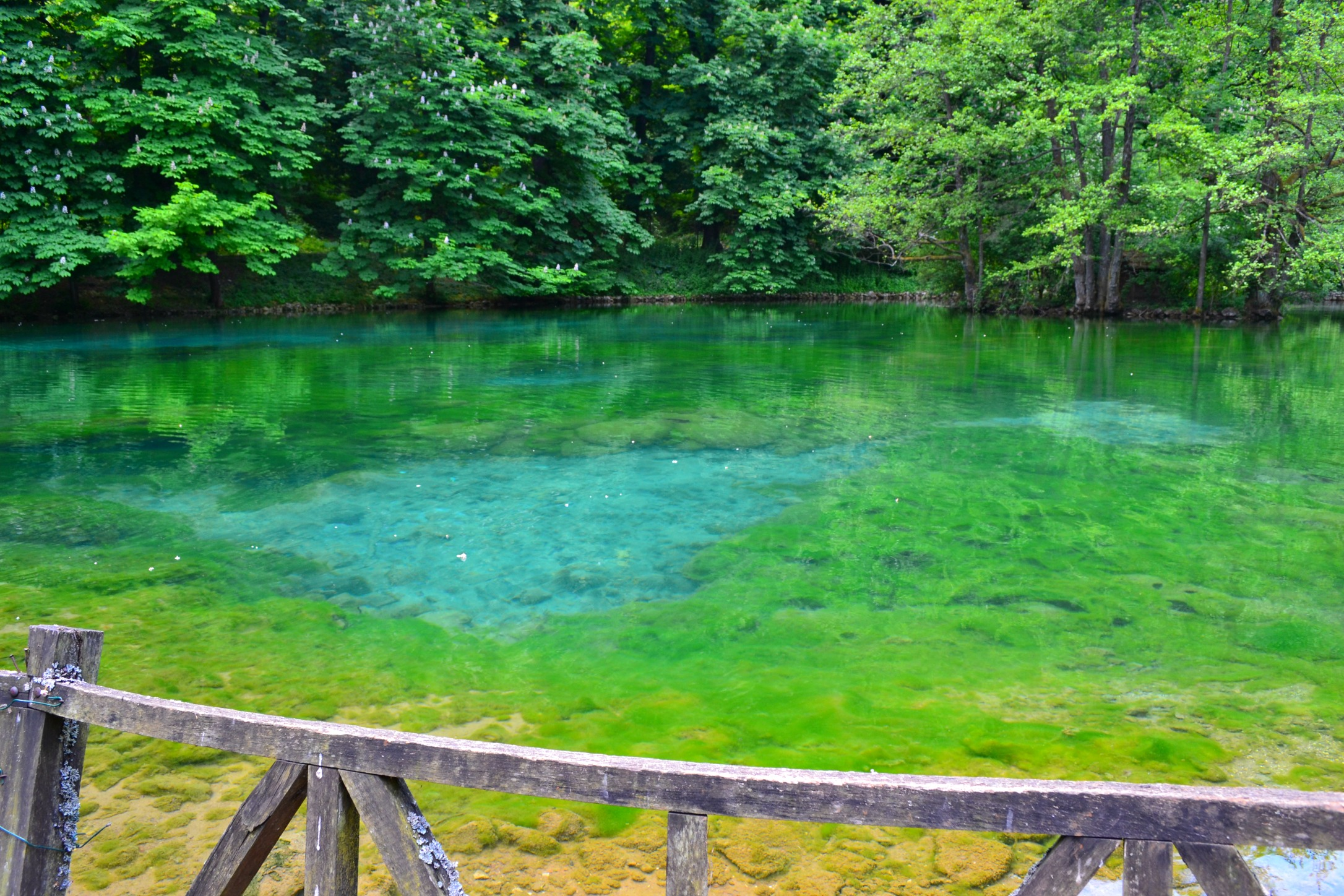Lakes in Vrelo Bosne, Sajarevo, Bosnia and Herzegovina
