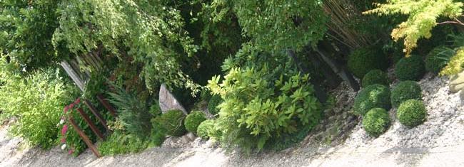 jardin-ombre-vue-plongeante