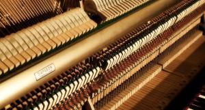 beginner keyboard, pianoforte mechanics