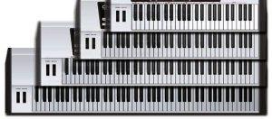 beginner keyboard, type of keybeds