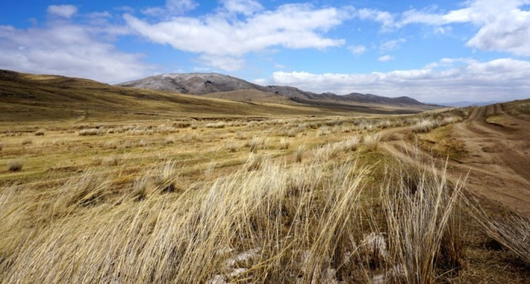 Mongolie, Parc national de Khustaïn