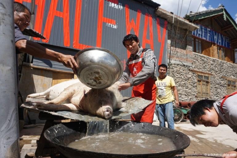 Chine, Yunnan, Gorges du saut du tigre, half way