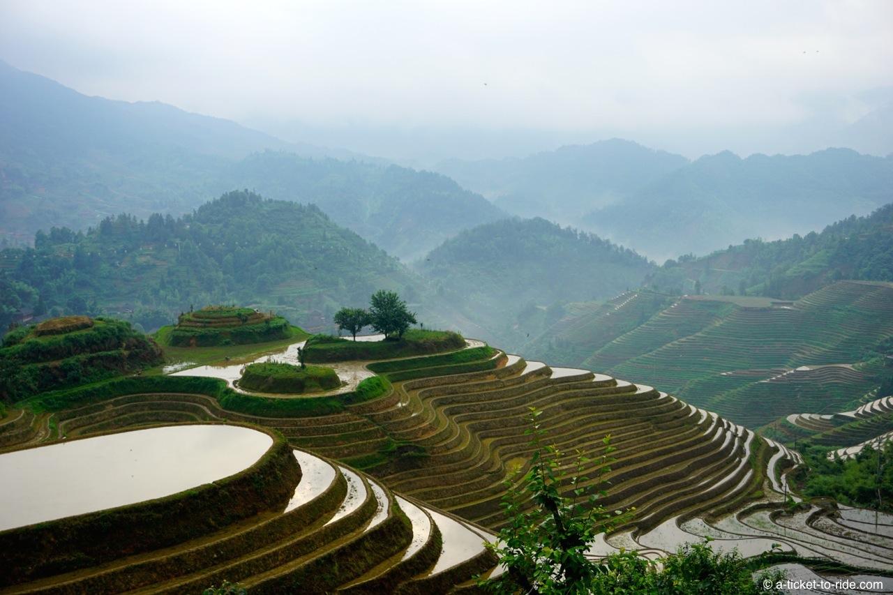 Chine, rizières de Longji