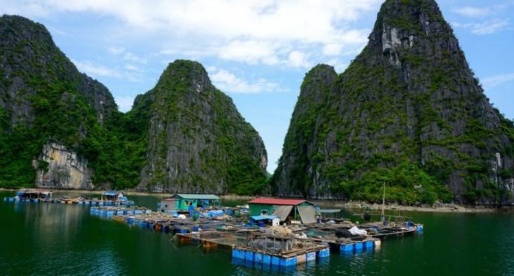 Vietnam, baie d'Halong, village flottant