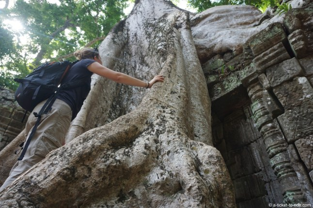 Cambodge, Angkor, Ta Prohm