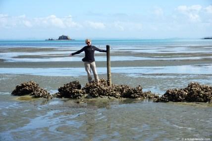 Nouvelle-Zélande, Waiheke island, Rocky bay