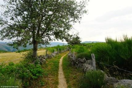 France, GR 70, plateau Pont-de-Montvert