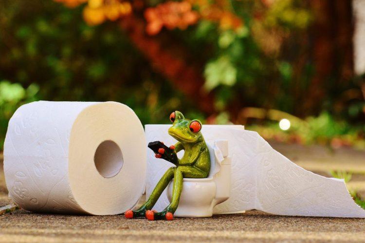 Du papier aux toilettes !