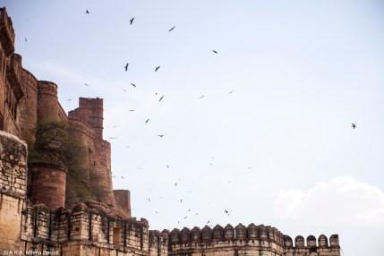Inde, le fort de Jodhpur