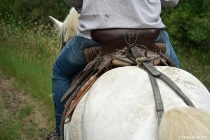 Camargue, à cheval