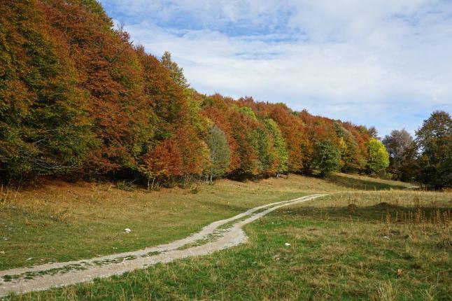 plateau-de-retord-automne