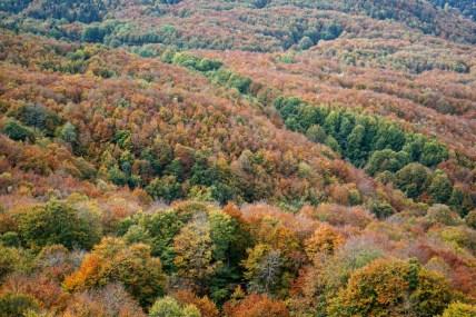 plateau-de-retord-couleurs-automne