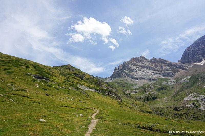 Pyrénées, pâturages