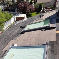 roof repair and skylight