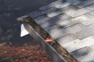 gutter guards made out of mesh to prevent leaves from getting stuck