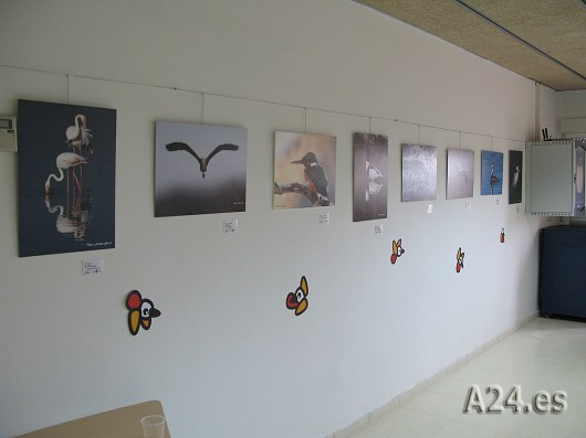 A24.es