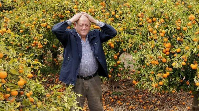 A Paco Sorolla le dio un infarto por el estrés que ha pasado con la crisis de las naranjas Coop Burrian