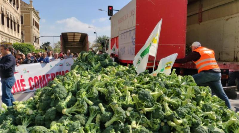 Manifestación de agricultores en Murcia: Cientos de tractores toman la ciudad