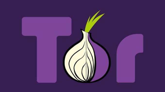 Cómo instalar el navegador Tor y permanecer en el anonimato