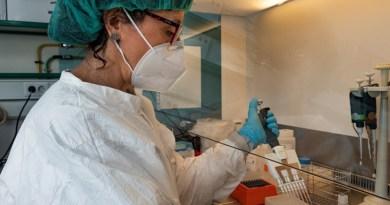 Rosa Guerrero, investigadora del IIBM, prepara las muestras para aislar el material genético (ARN) mediante el uso de un robot. Vinca Page /CSIC Comunicación