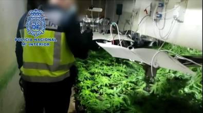 La Policía Nacional desarticula dos puntos negros de droga en Alicante