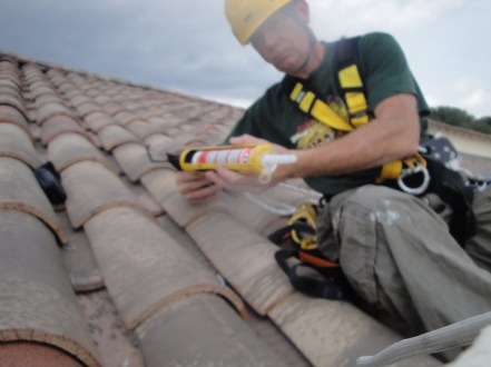 Protection anti pigeons Immeuble sur Nimes